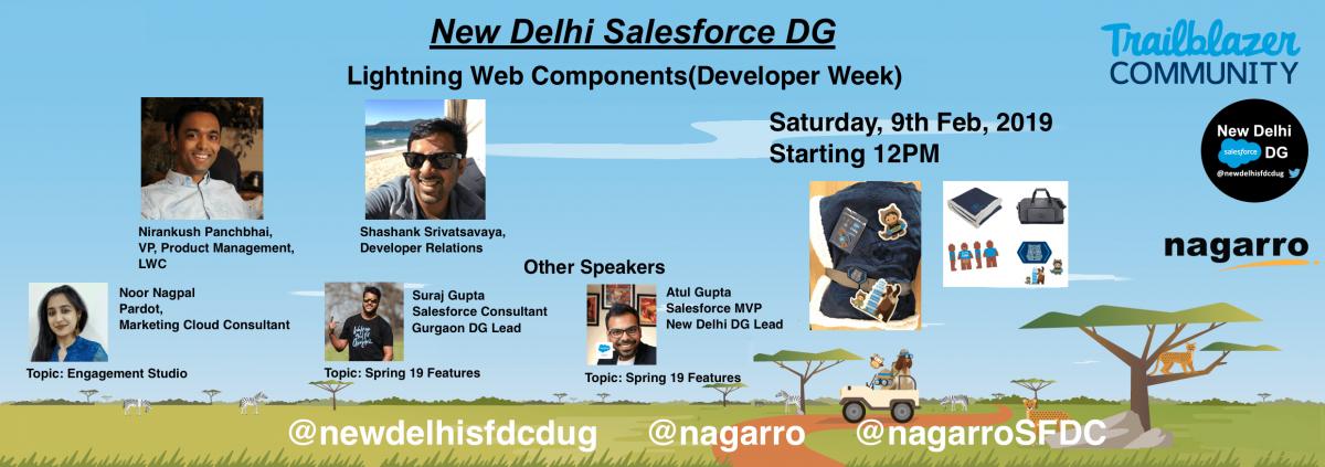 Developer Week 2019: New Delhi Salesforce Community Group